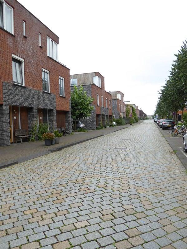 Zwanebloemlaan, Amsterdam