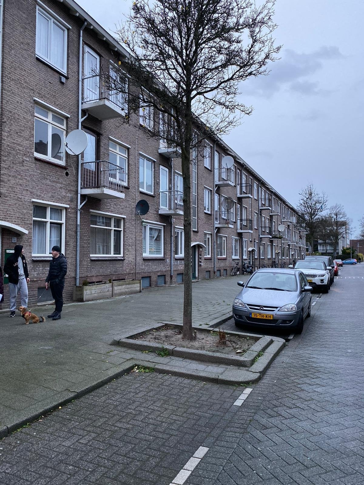 Whores Rotterdam