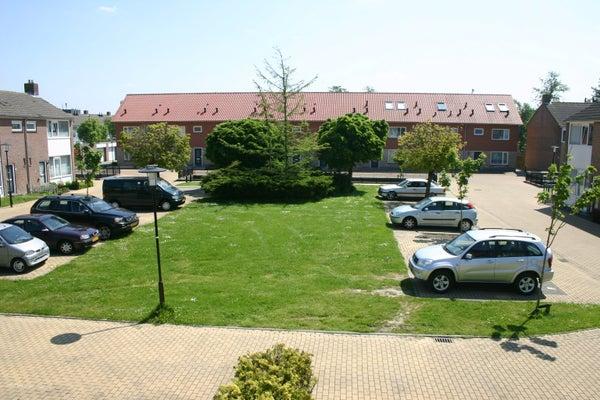 Larixstraat, Terneuzen