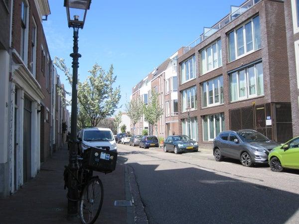 De Witstraat