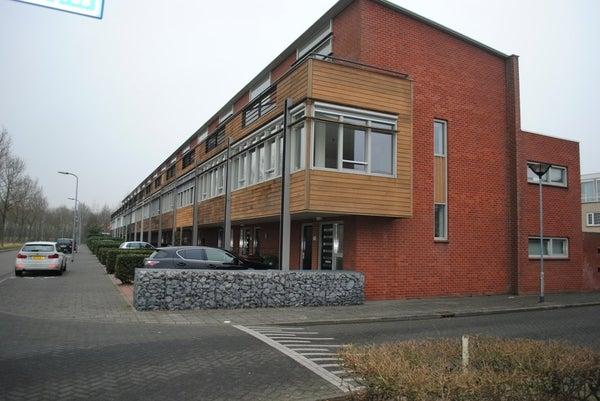 Waterviolier, Breda