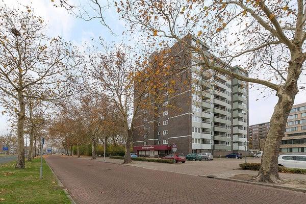Limburglaan