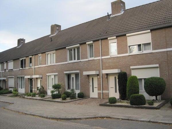 Doctor Willem Dreesstraat
