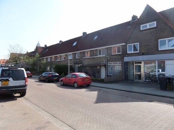 Alard du Hamelstraat