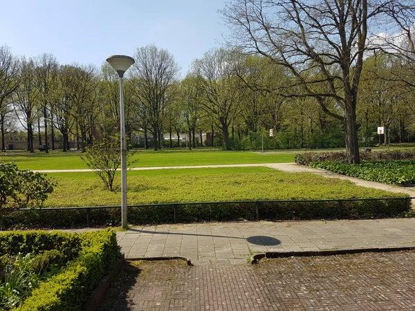 Mullerweg