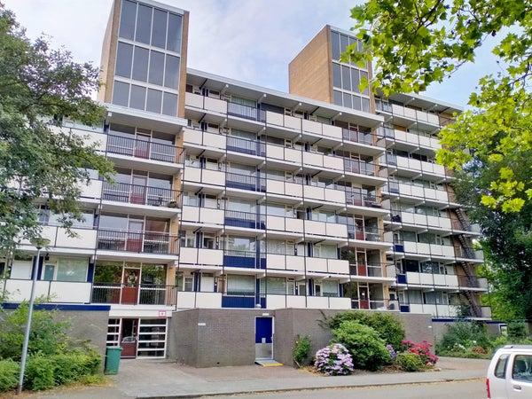 Aart van der Leeuwlaan, Groningen
