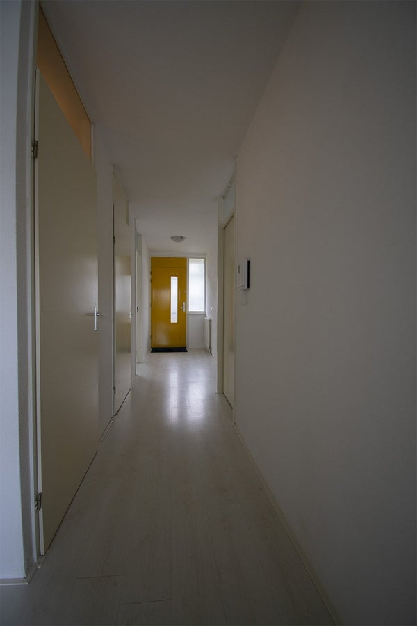 Ladogameerhof