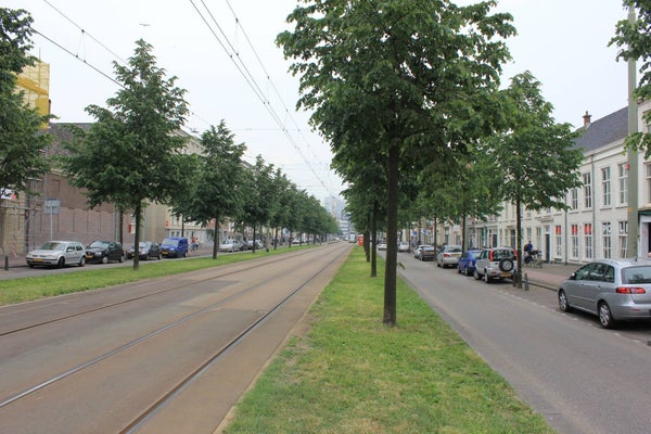 Prinsegracht, The Hague