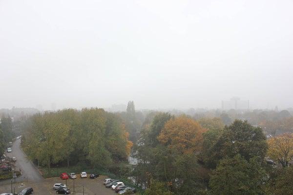 Populierendreef, Voorburg