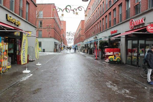 Steentijdsingel, The Hague