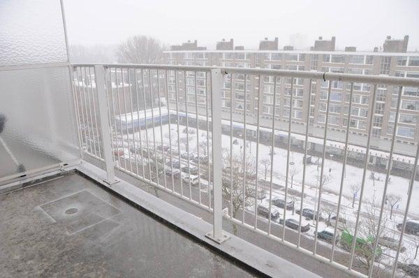Hengelolaan, The Hague