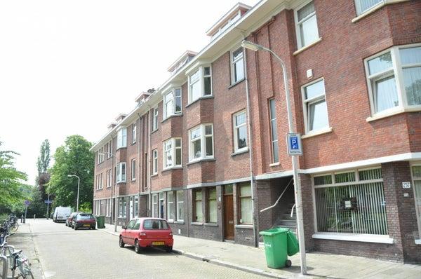 Allard Piersonlaan, The Hague
