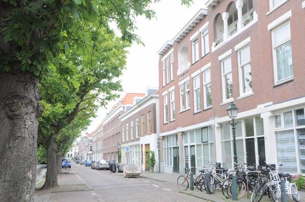 Houtzagerssingel, The Hague