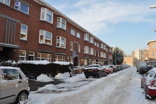 Lamarckstraat, The Hague