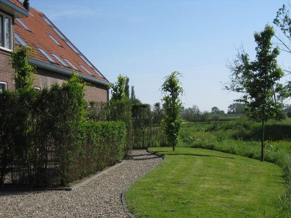Dorpsweg, Hoornaar