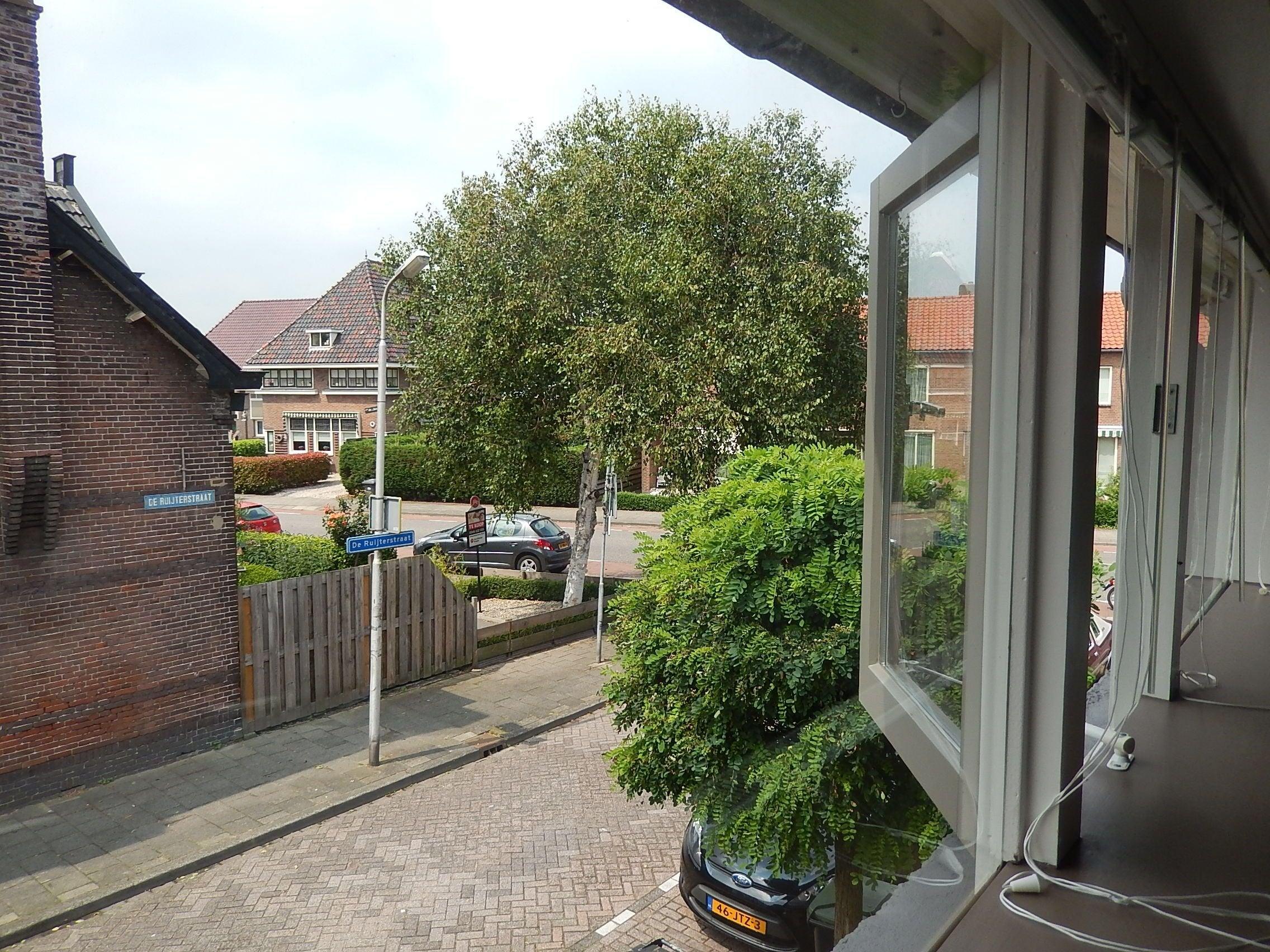 De Ruijterstraat, Leerdam