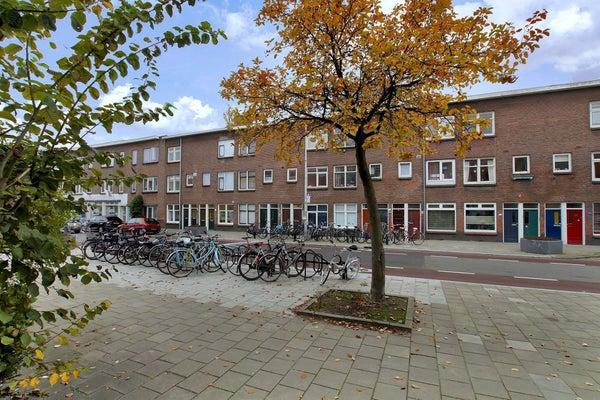 Laan van Nieuw-Guinea, Utrecht