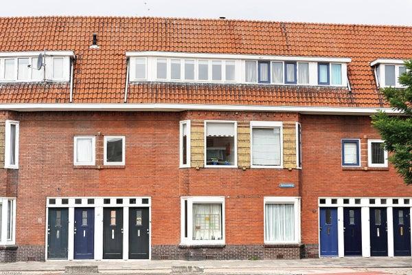 Spinozaweg, Utrecht