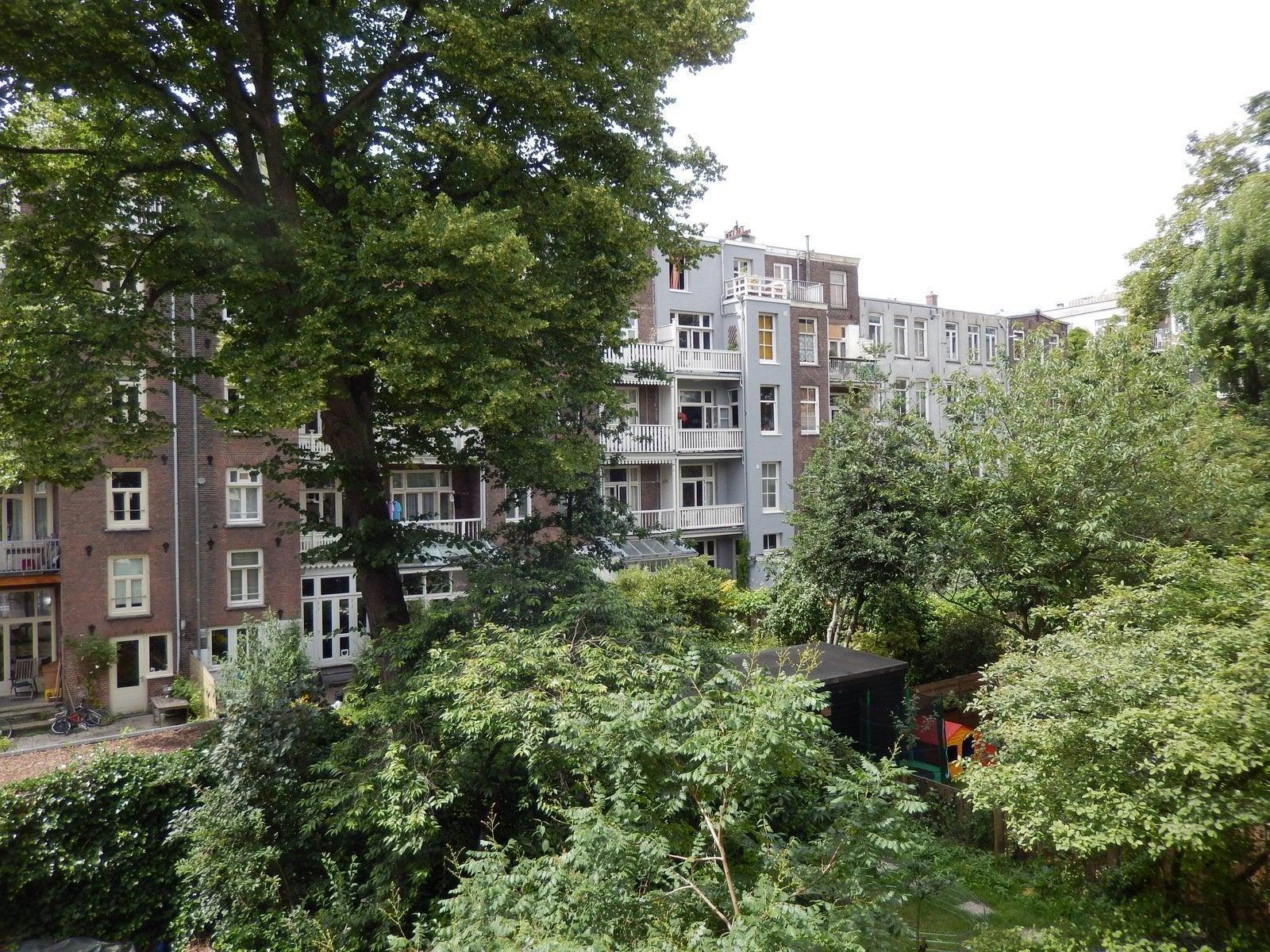 Pieter Pauwstraat, Amsterdam