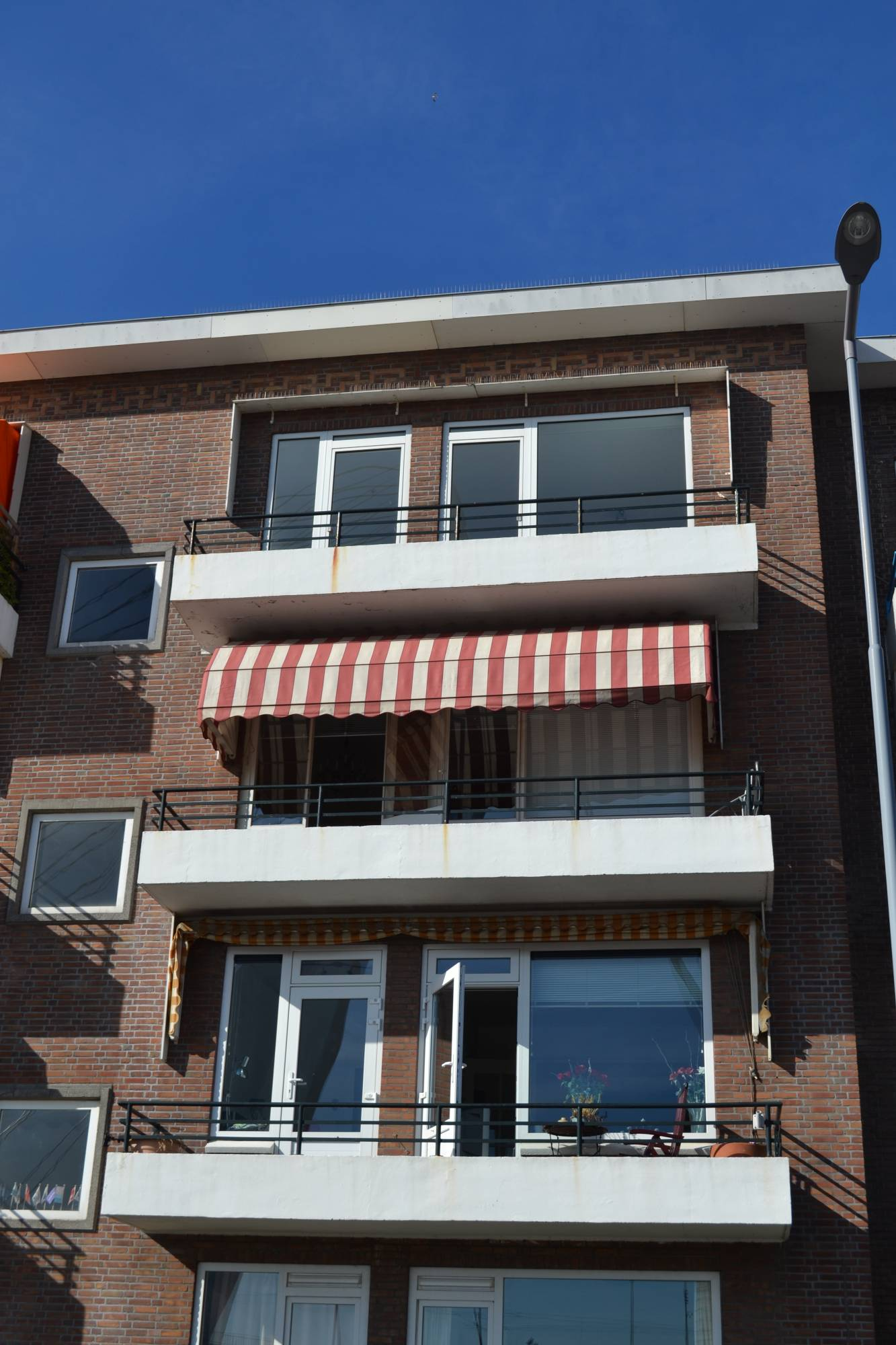 Rotterdam, Meeuwenstraat