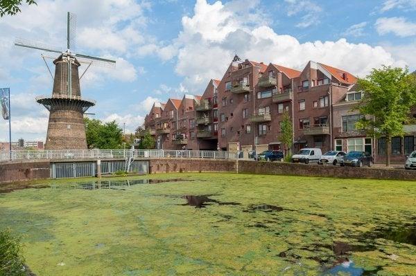 Spinhuispad, Schiedam