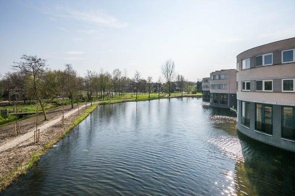 Ringvaart, Schiedam