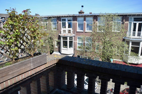 Copernicuslaan, The Hague