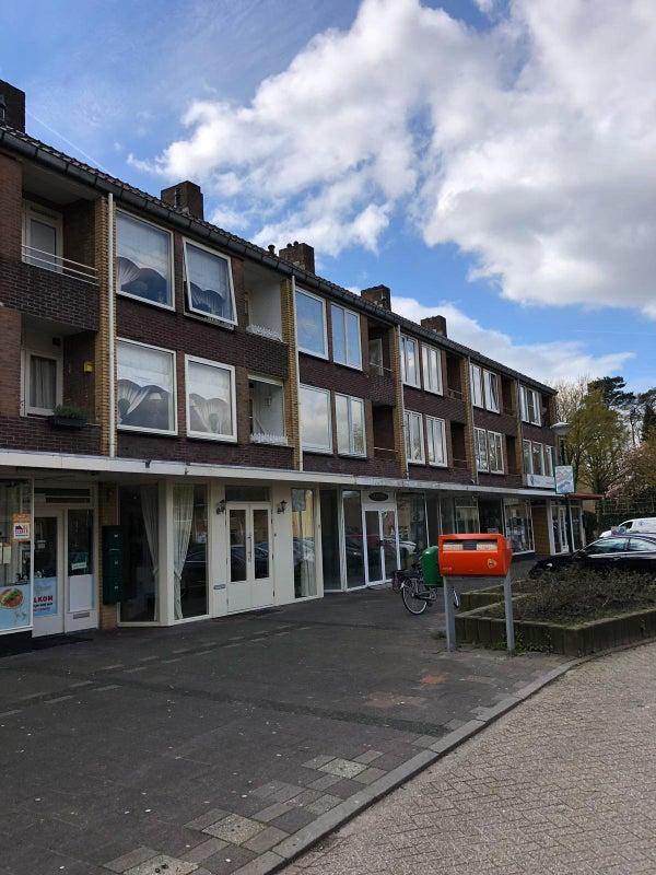 Buys Ballotlaan, Soesterberg