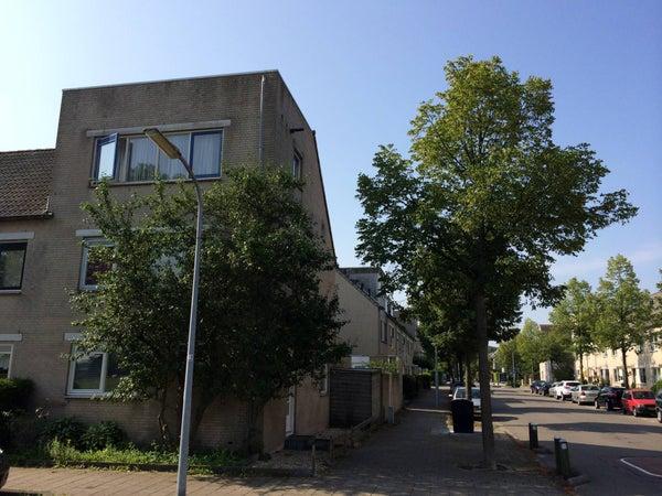 Vrijheidsweg, Haarlem