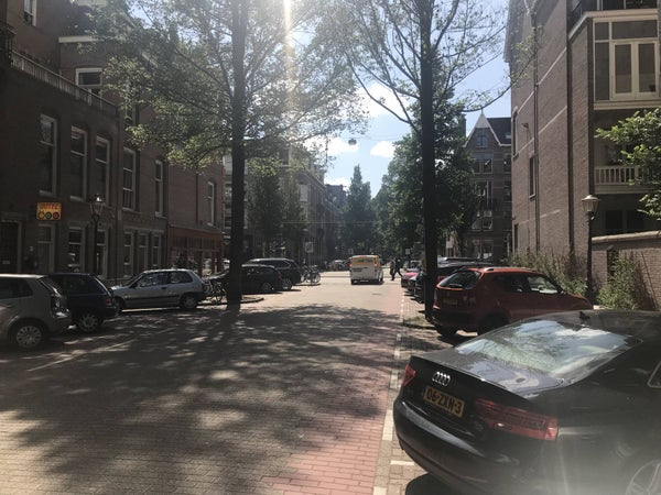 Frans van Mierisstraat, Amsterdam