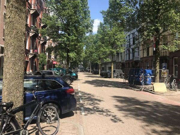 Frans van Mierisstraat