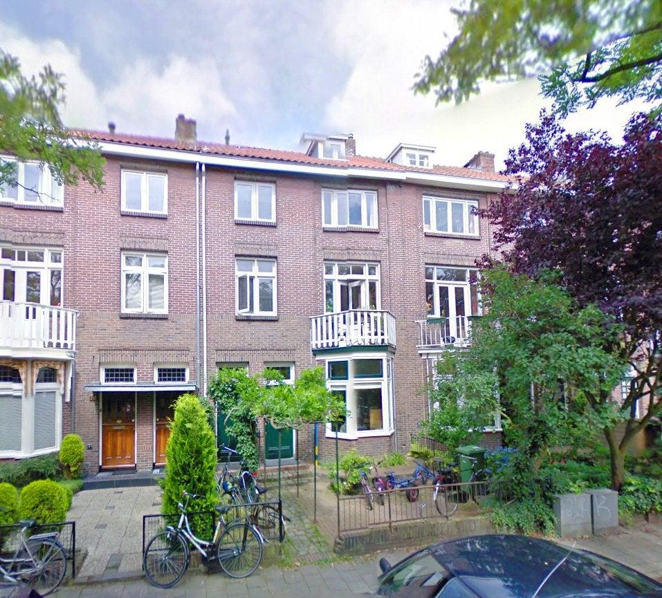 Photo of Ruisdaelstraat