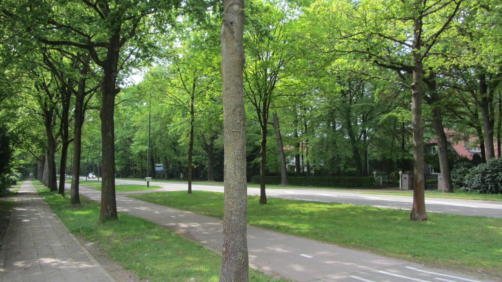 Amersfoortsestraat