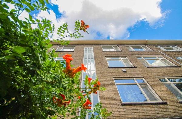 Nolensstraat, Rotterdam