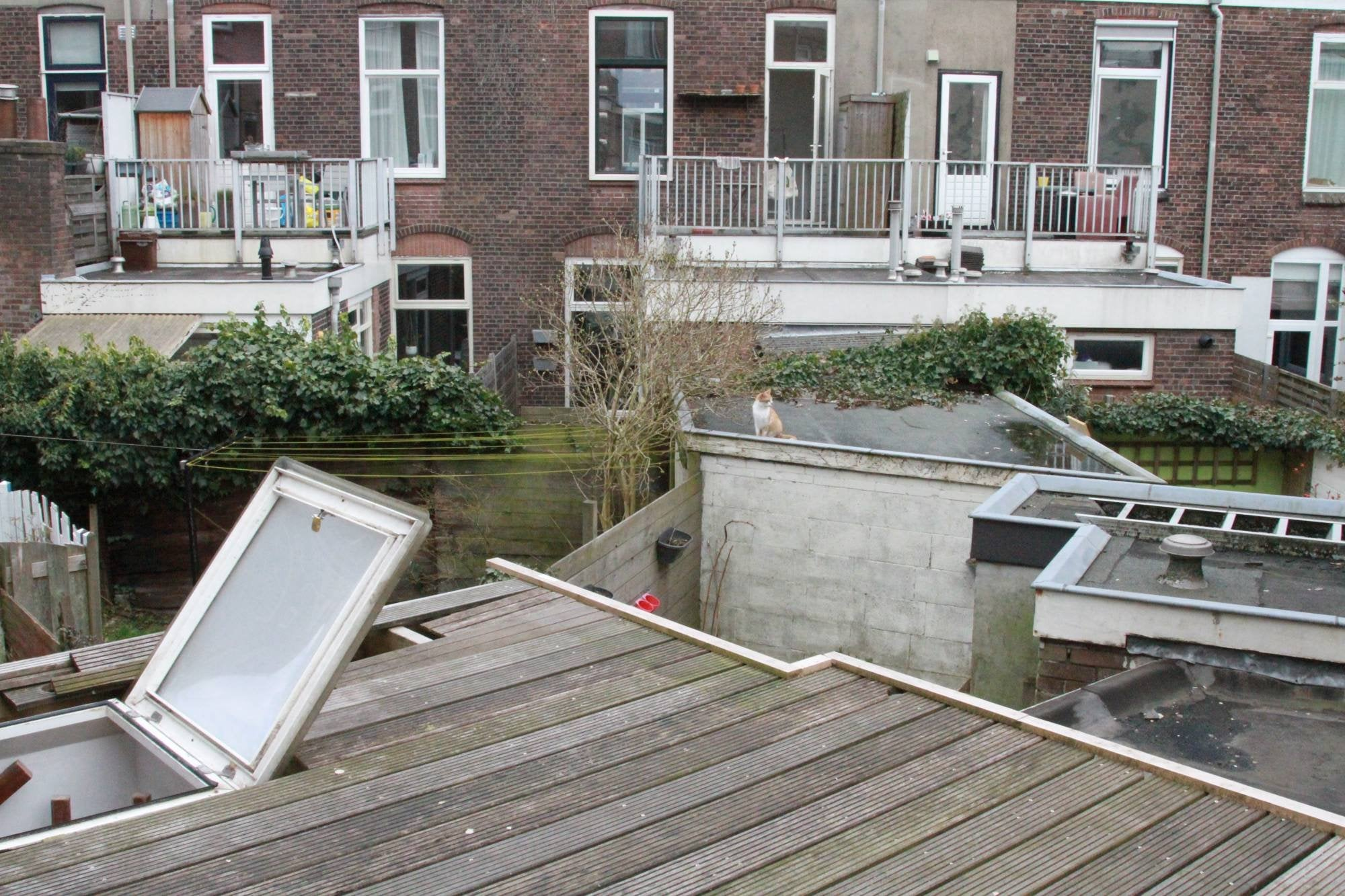 https://public.parariusoffice.nl/293/photos/huge/51621505.1523441358-226.JPG