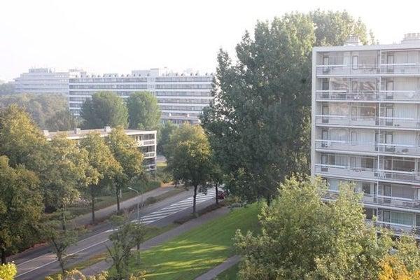 Duivelandselaan, Amstelveen