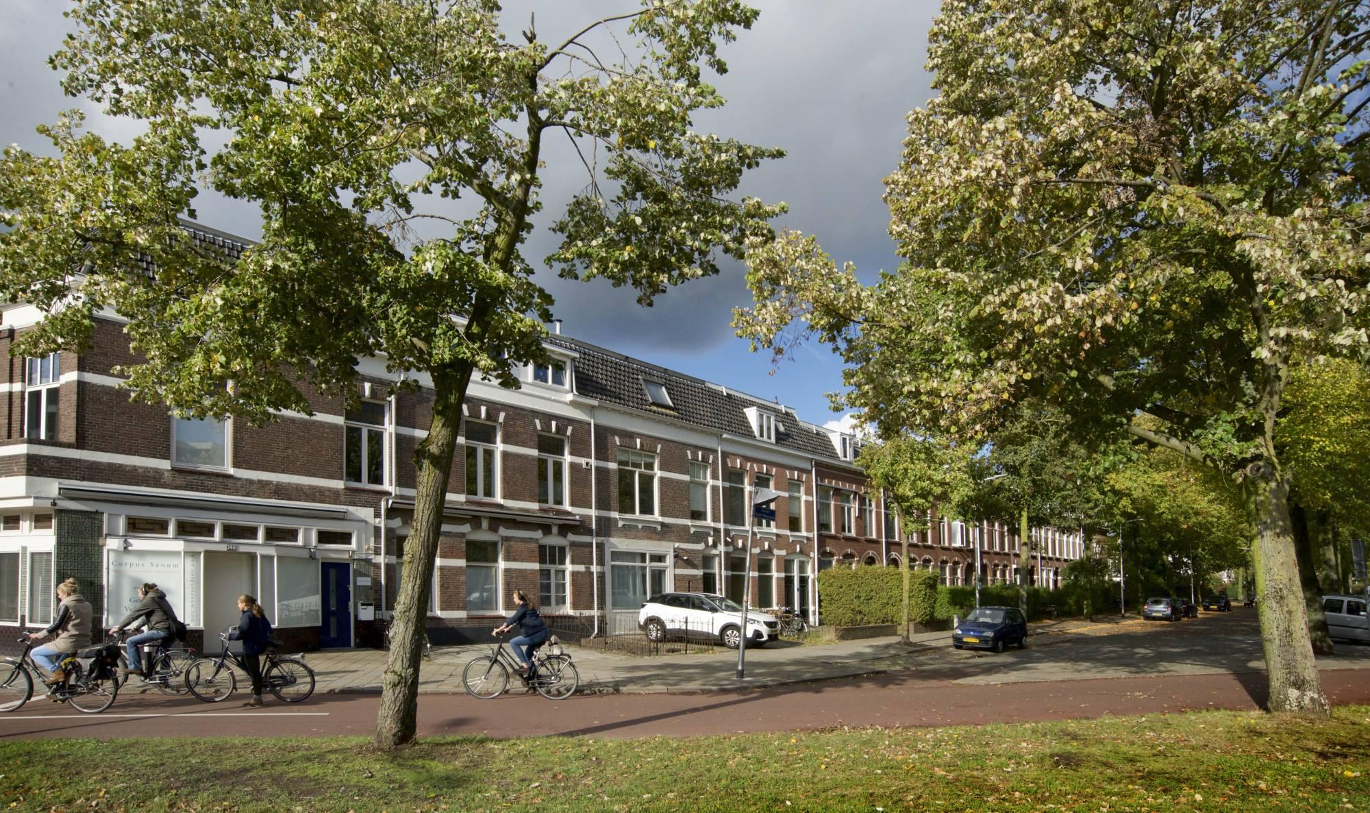 Krayenhofflaan, Nijmegen
