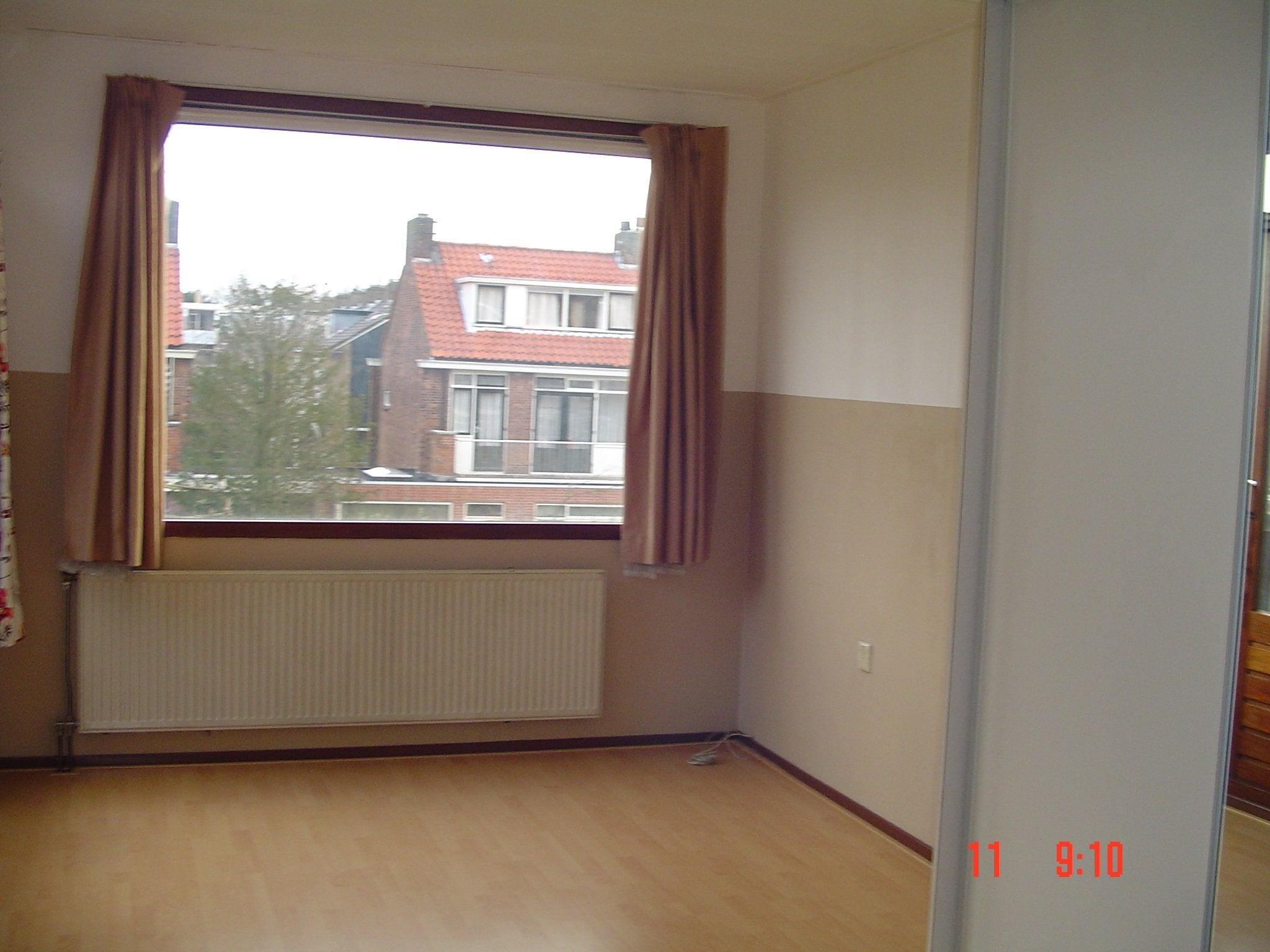 Molenlaan, Rotterdam