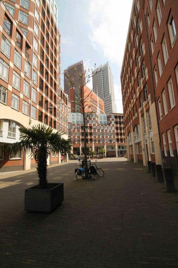 Calliopestraat, The Hague