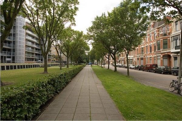 Cornelis de Wittlaan, The Hague
