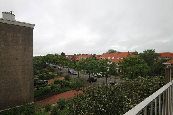 Goudenregenstraat, The Hague