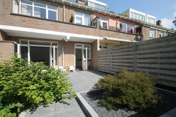 Lupineweg, The Hague