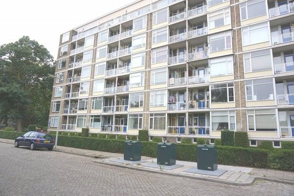 Denenburg, The Hague