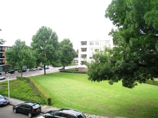 Meindert Hobbemastraat