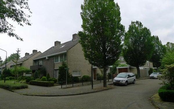 Rijnlaan