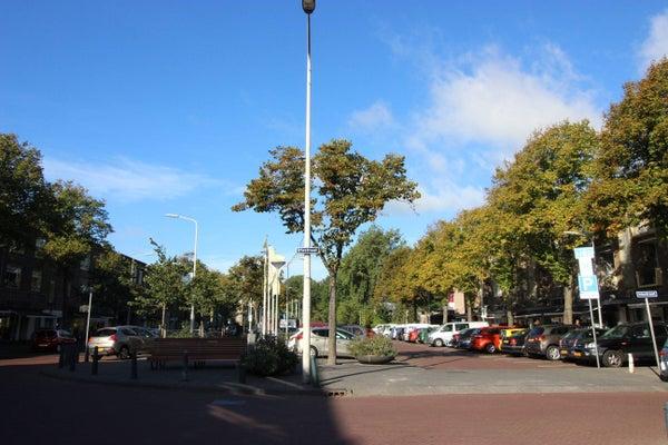 Goudsbloemlaan, The Hague