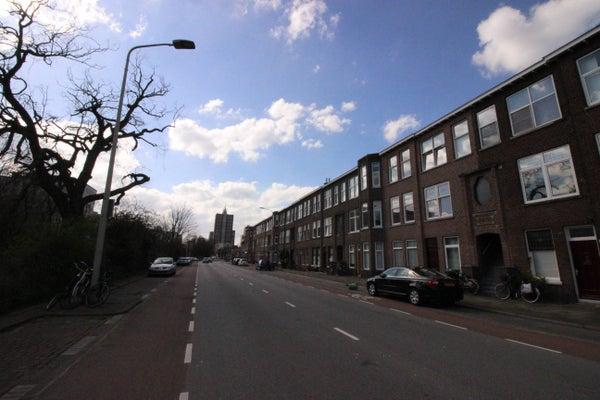 Schenkkade, The Hague