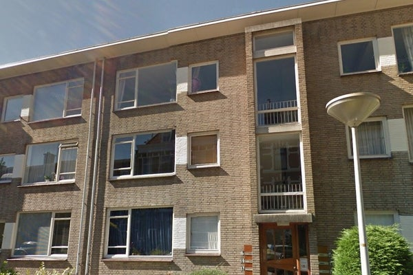 De Carpentierstraat, The Hague