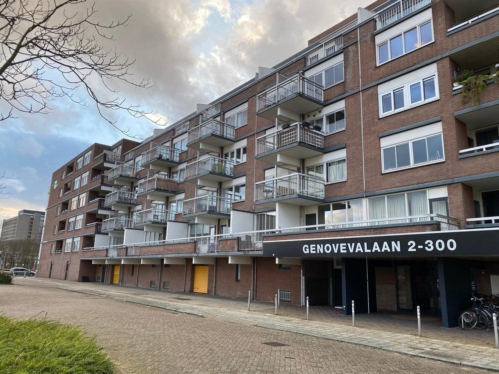 Eindhoven, Genovevalaan