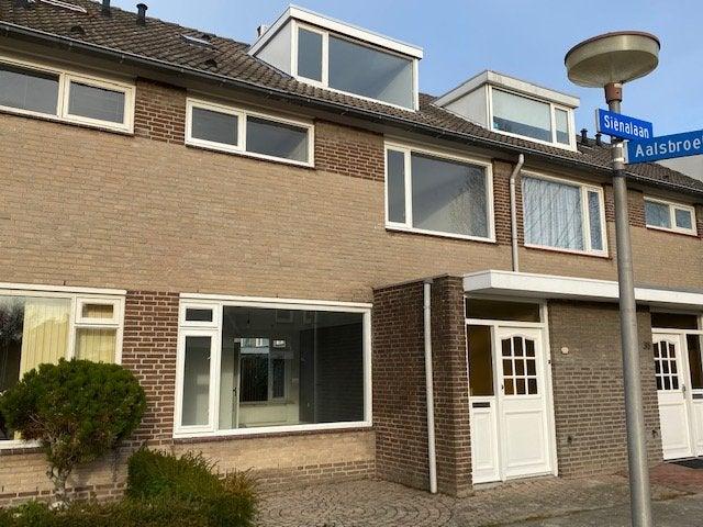 Eindhoven, Sienalaan